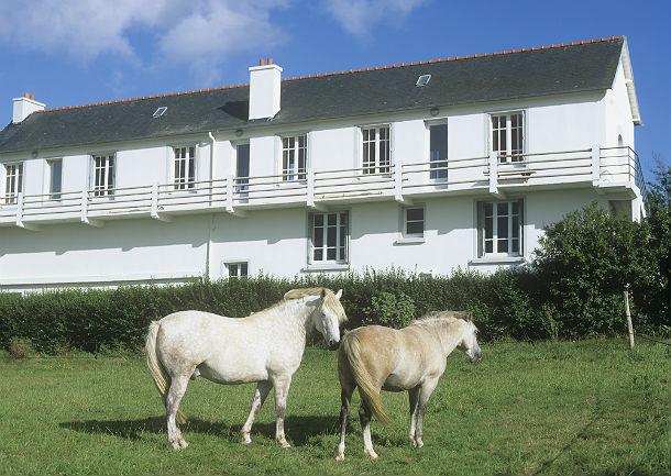 case cavallo e case somaro