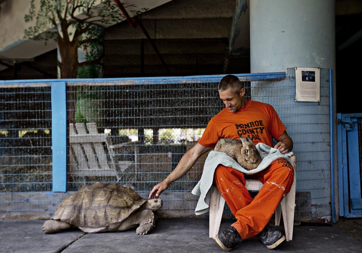 La prigione che ospita animali negli USA