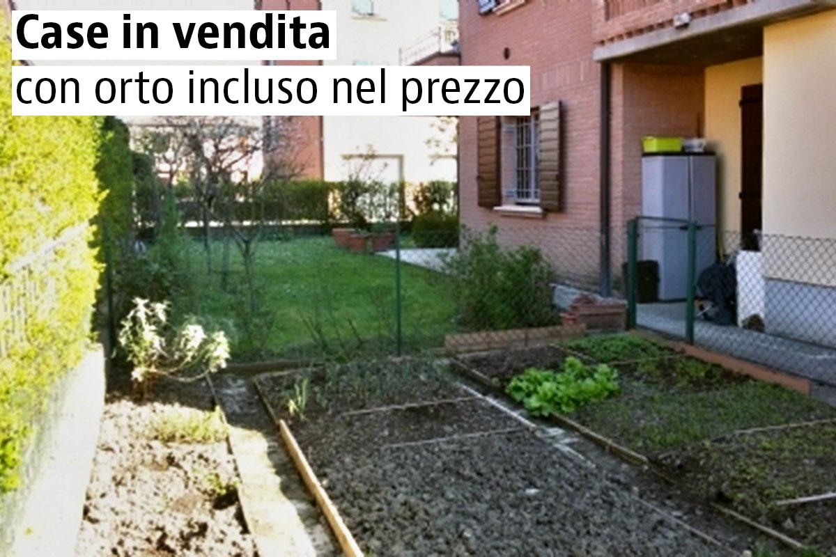 Giardini orti e prati verticali una nuova frontiera del for Vendita piante orto