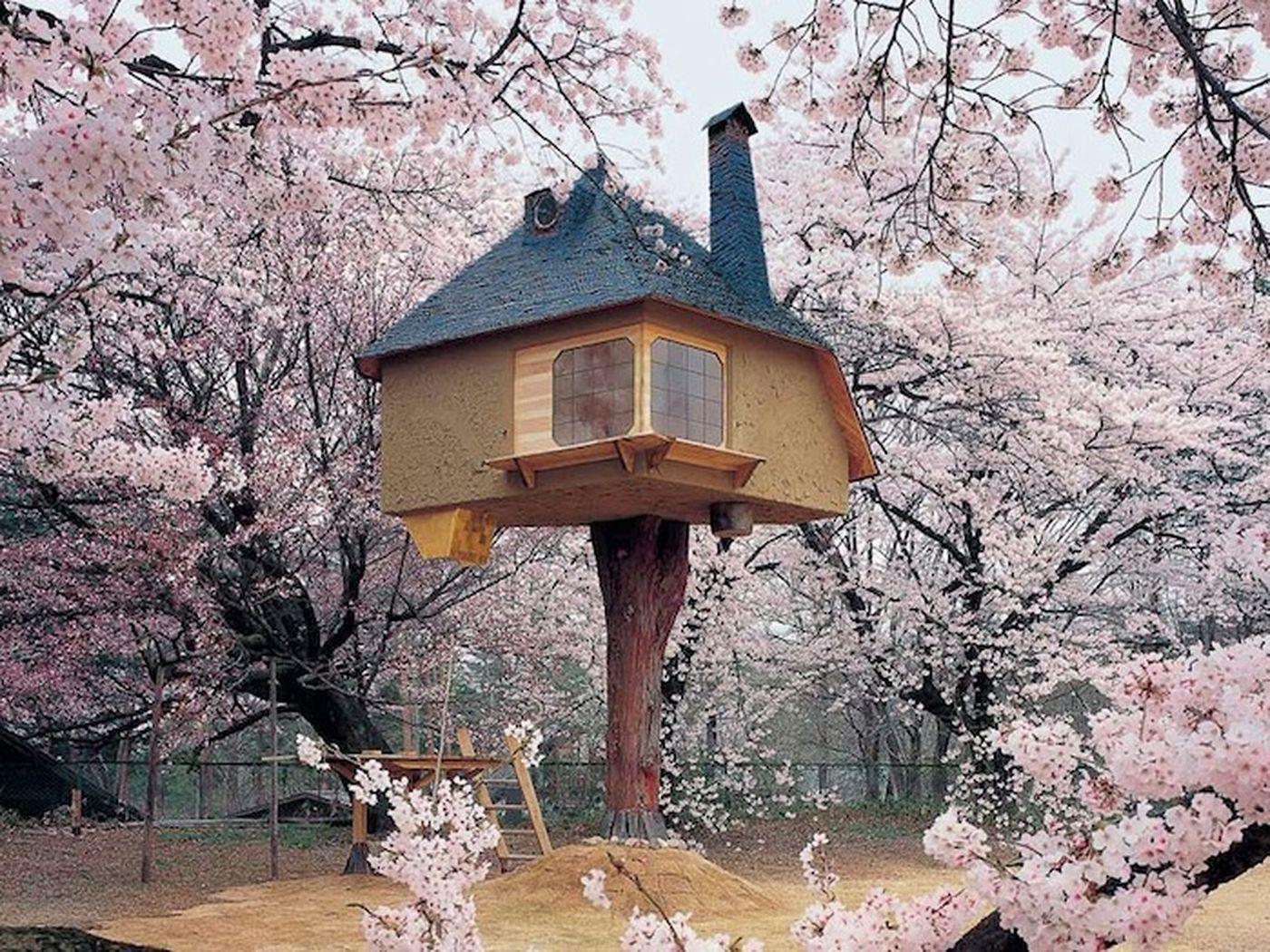 La casa del the (Giapponese)