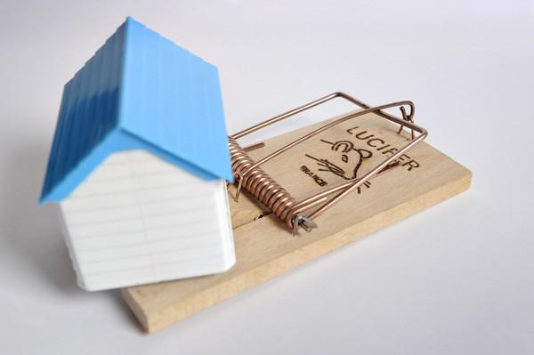 Diritto di propriet e prescrizione si pu perdere la - Diritto di prelazione su immobile confinante ...