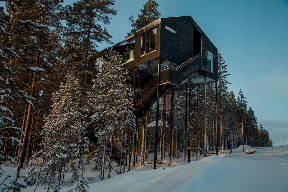 L'hotel è posizionato tra le cime degli alberi di 55 m2 e 10 metri dal suolo / Tree Hotel