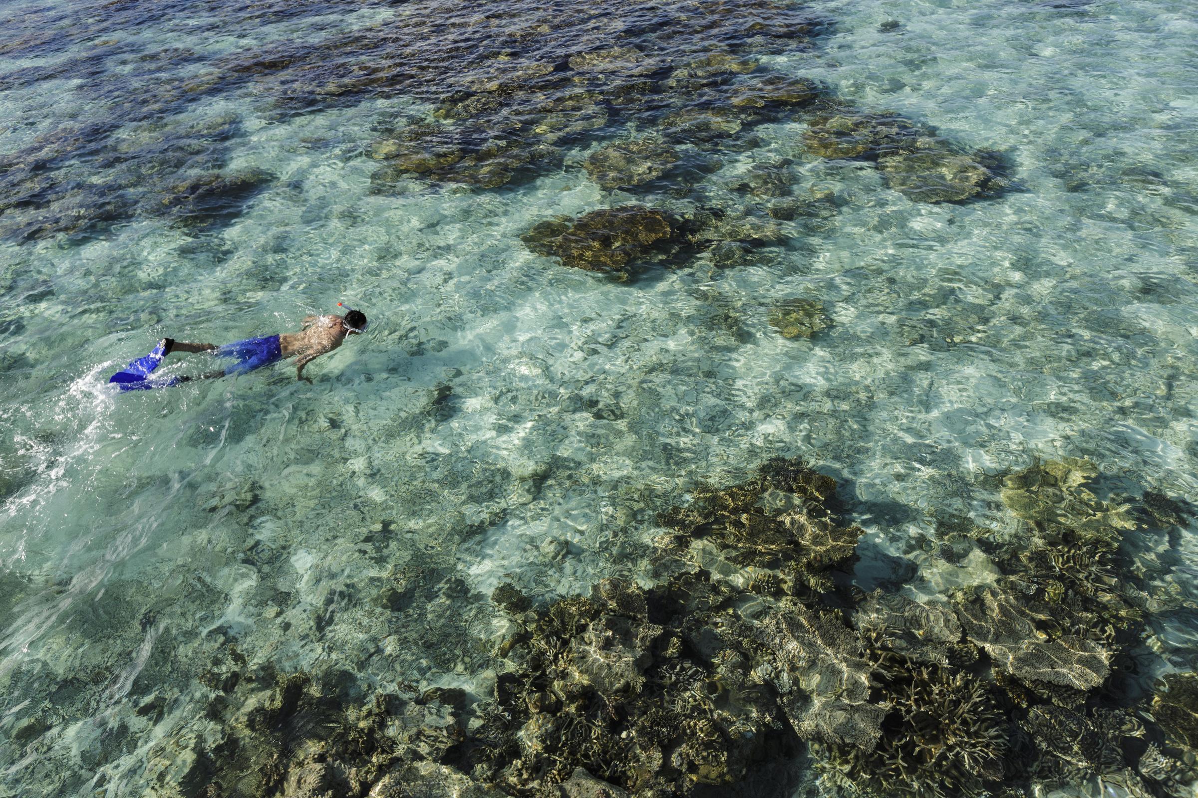 I coralli vicino sono il luogo perfetto per fare immersioni e scoprire la natura
