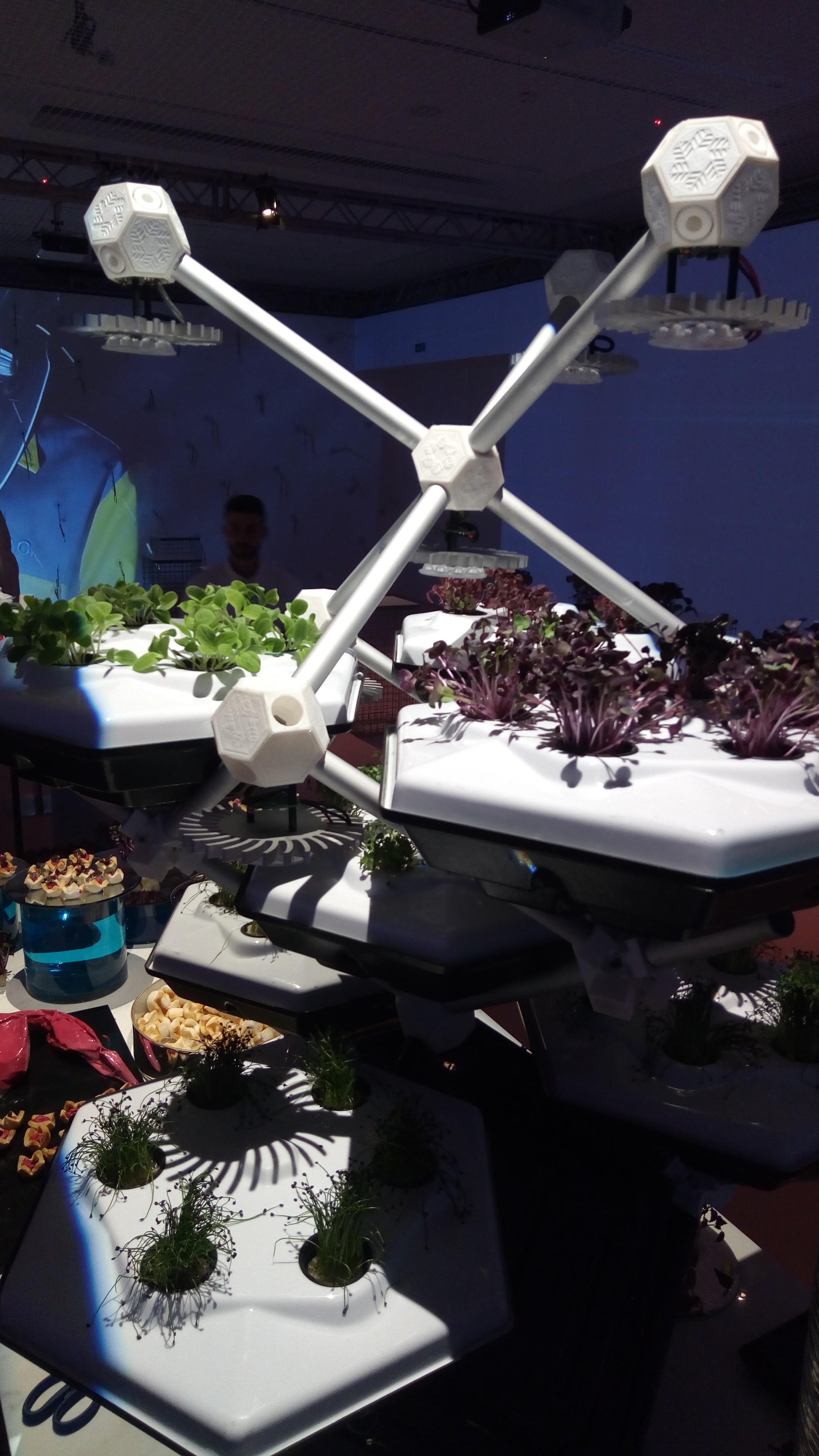 Hexagro Urban Farming