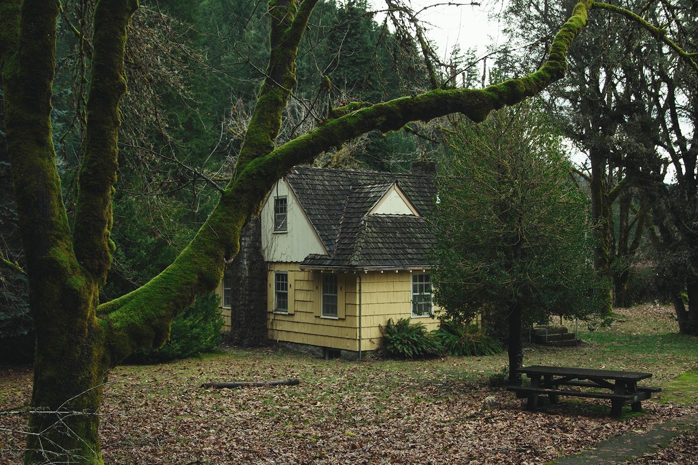Oregon, Stati Uniti / Brendon Burton