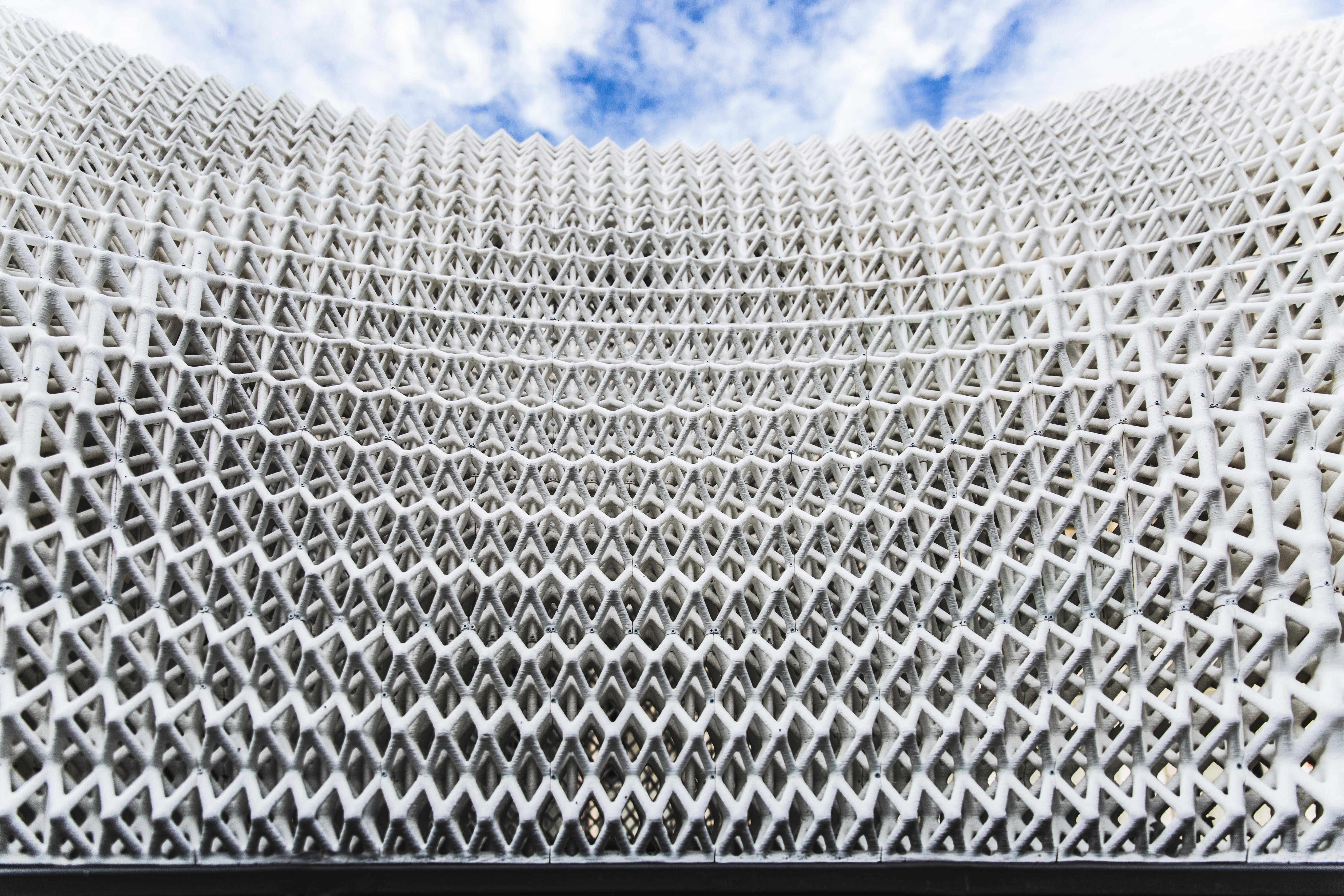 Vista della struttura cellulare  / Gabriele Seghizzi