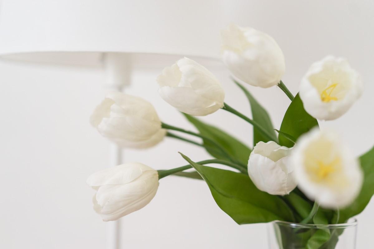 I fiori donano freschezza
