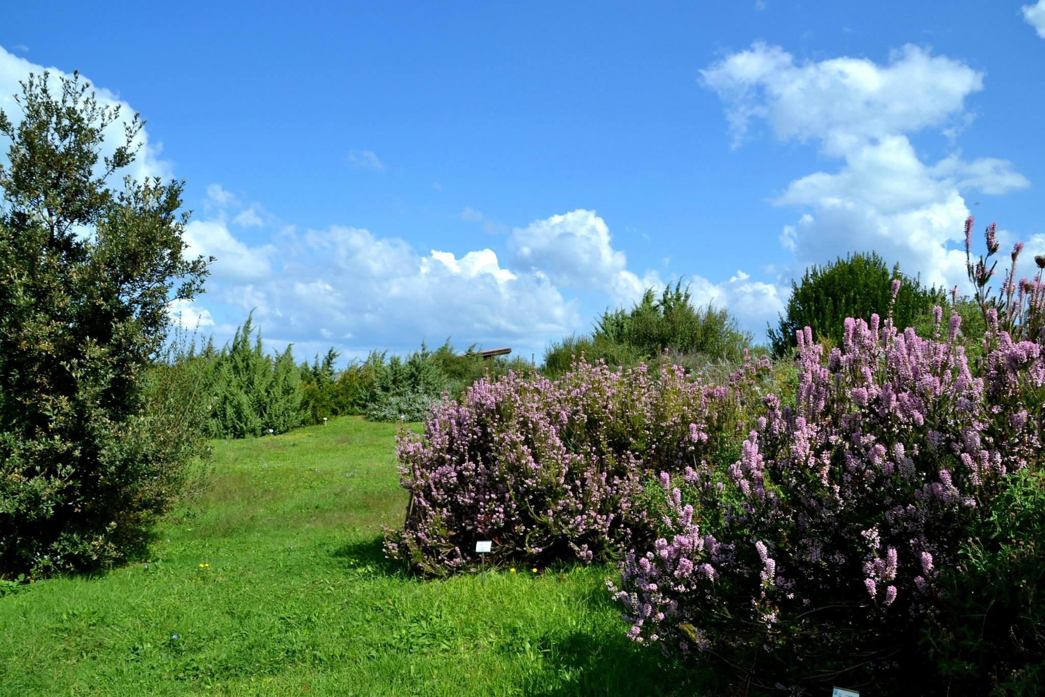 Giardino botanico mediteranneo (Potenza) / FAI (Fondo Ambiente italiano)