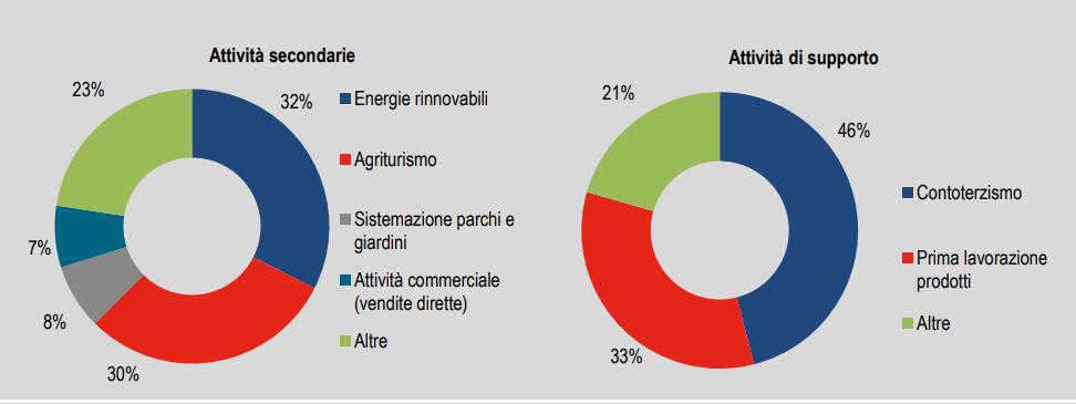 Le attività di supporto e secondarie dell'agricoltura / Istat