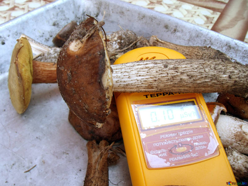 Un apparecchio misura le radiazioni