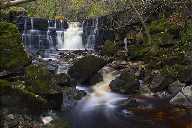 Milly e Whitfield Gill Force, nello Yorkshire (Gran Bretagna)