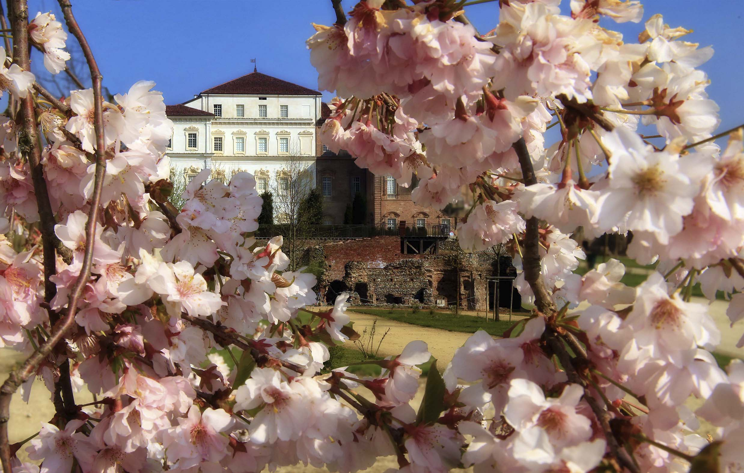 Archivio Consorzio Residenze Reali Sabaude