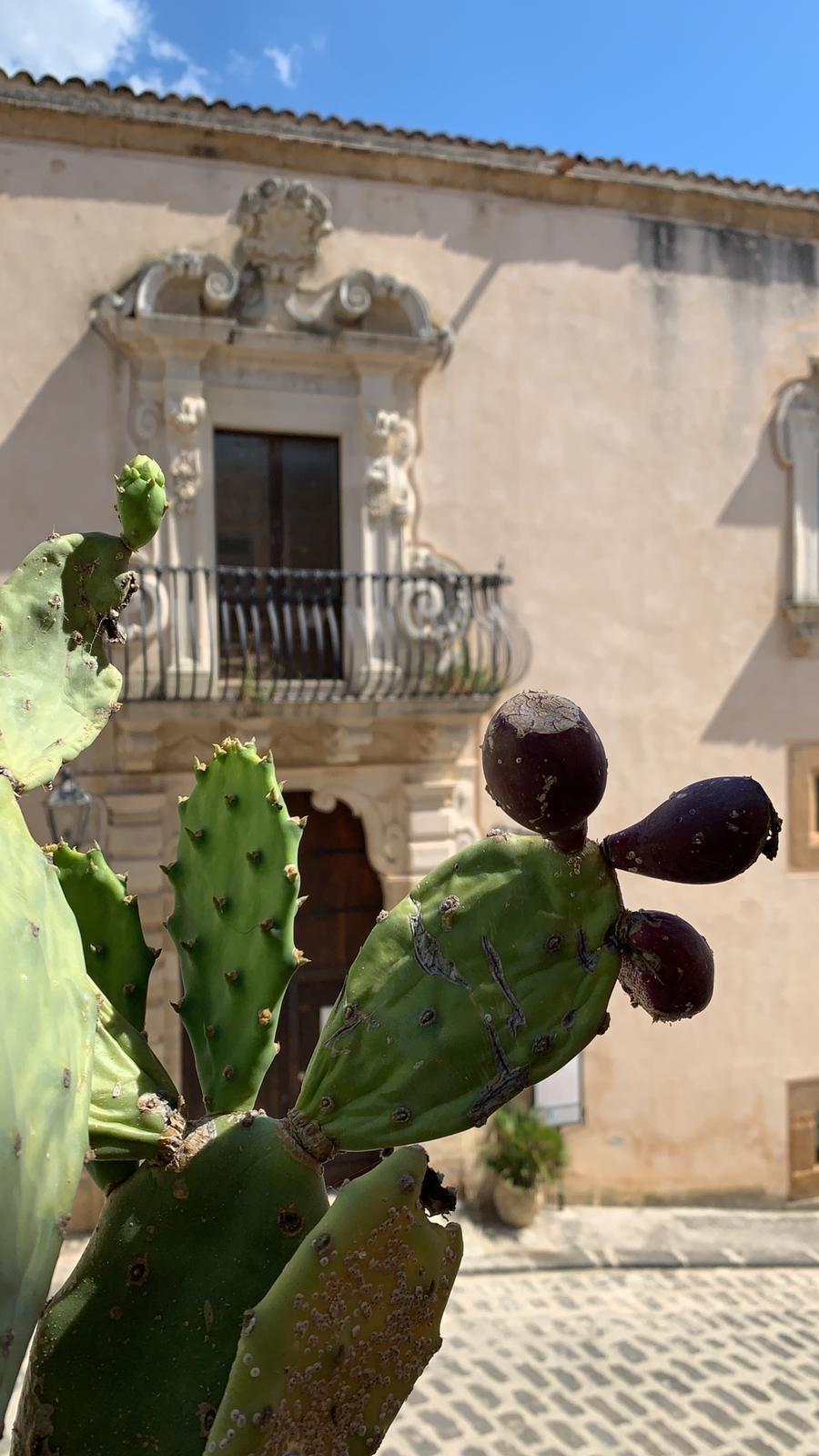 Immagini del vicesindaco di Sambuca di Sicilia, Giuseppe Cacioppo