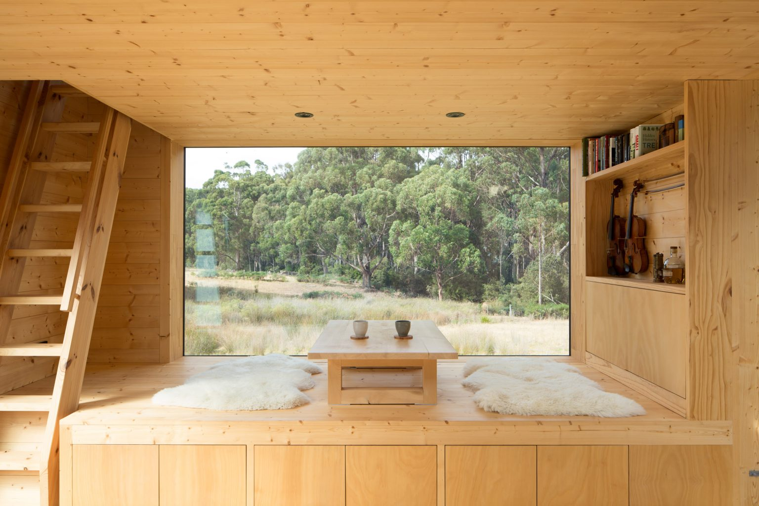 Rob Maver/Maguire + Devin Architects
