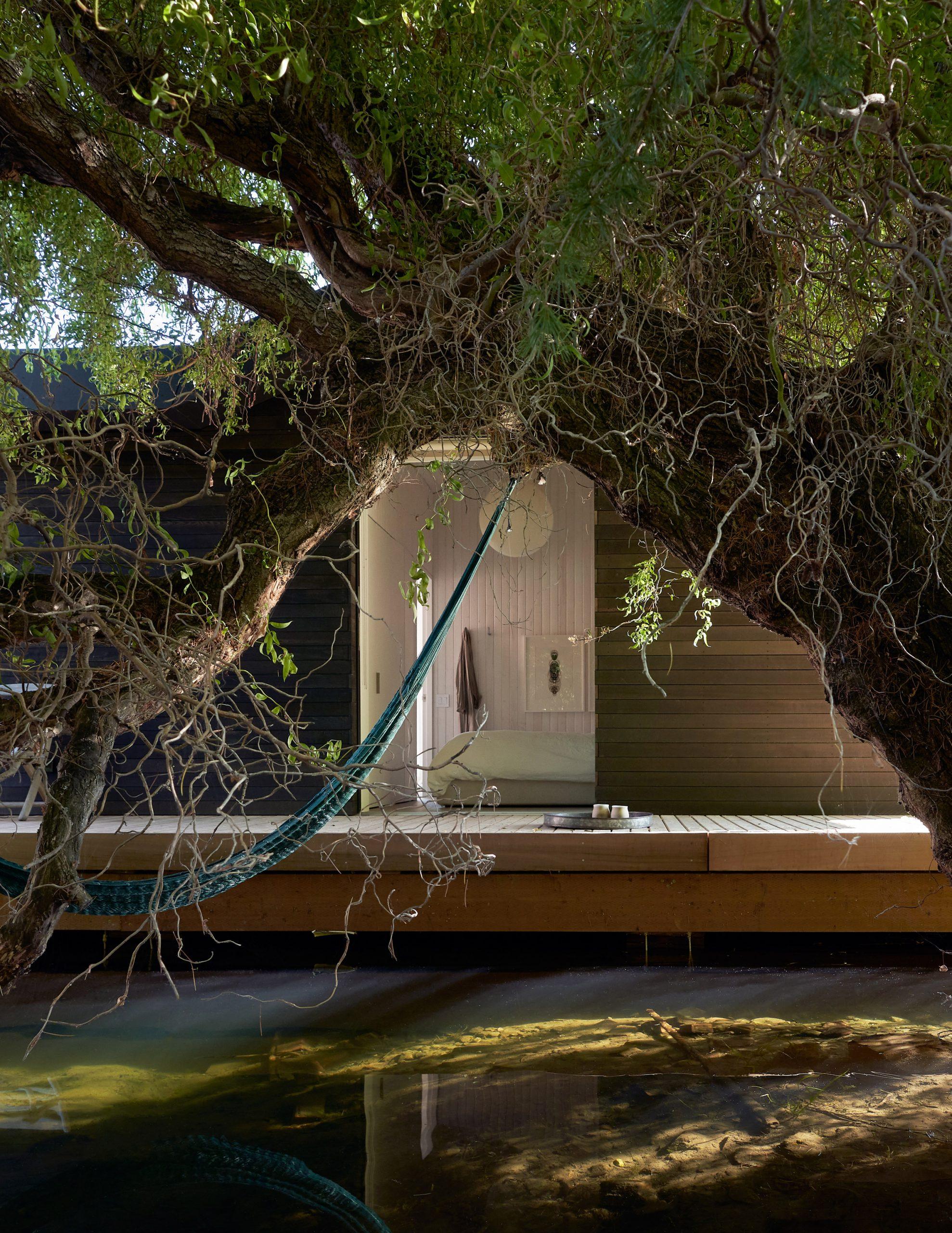 Circondata da acqua e alberi