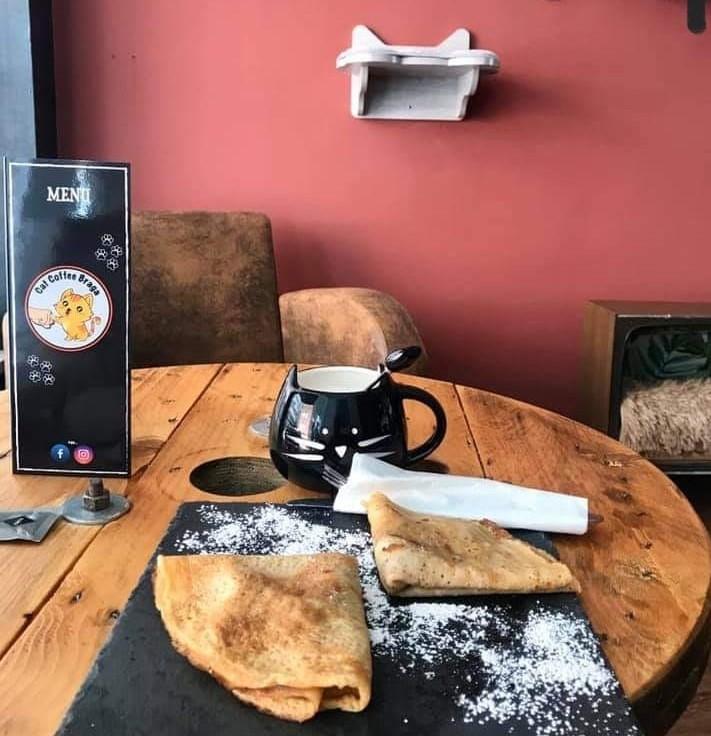 Facebook Cat Coffee Braga/ DR
