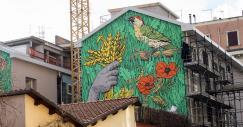 """""""Patrimonio Indigeno"""", la street art che dà nuova vita a Roma"""