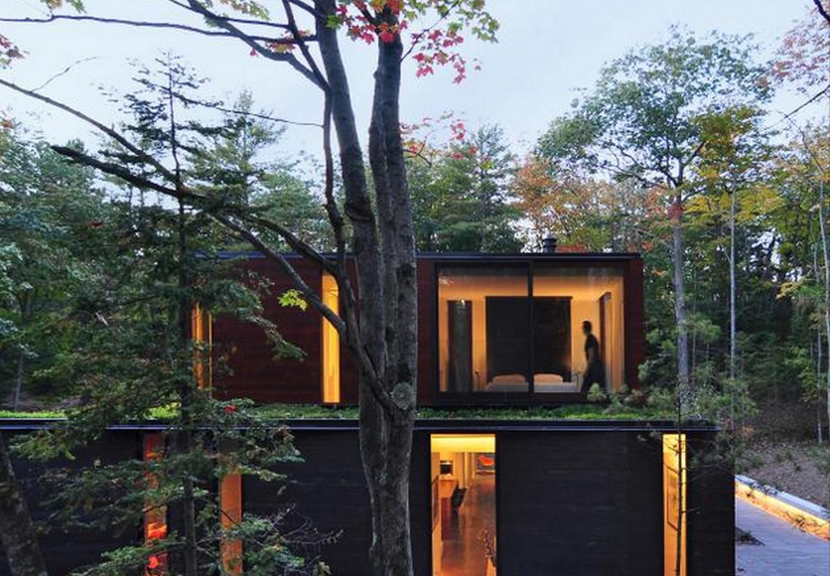 C È Una Casa Nel Bosco la casa camaleontica che si mimetizza con il bosco