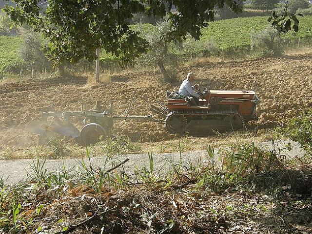 Elegant Scadenza Pagamento Imu Terreni Agricoli, Le Ultime Novità E Le Informazioni  Utili. Gtres