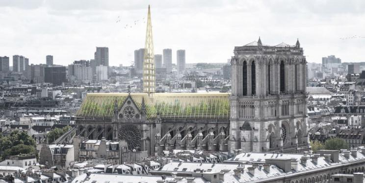 Immagine  - Un giardino botanico o una guglia luminescente, ecco i nuovi progetti per Notre Dame
