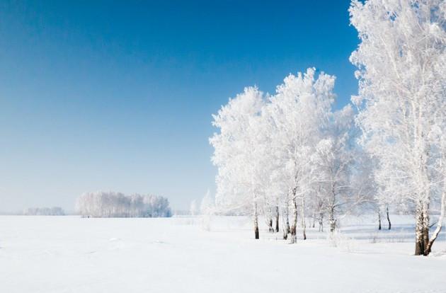 Immagine  - Un uomo d'affari russo ha messo in vendita un villaggio abitato per 300.000 euro